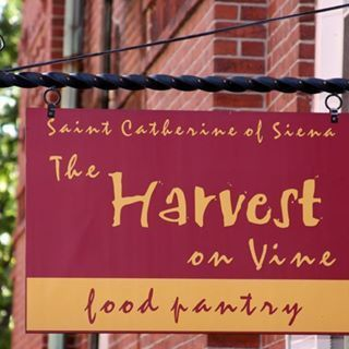 The Harvest on Vine