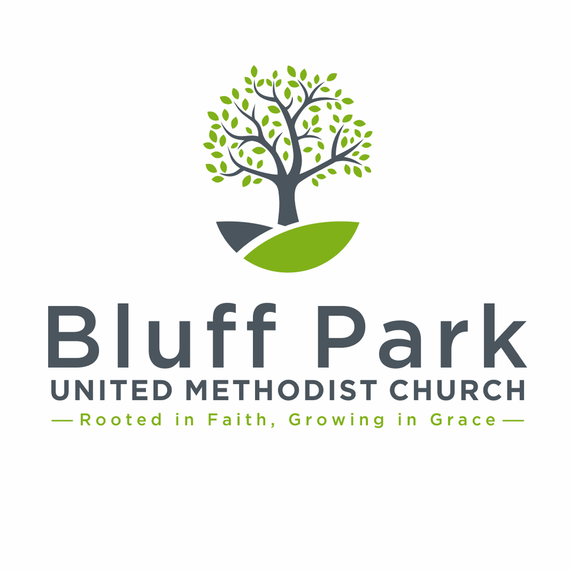 Bluff Park UMC Food Pantry